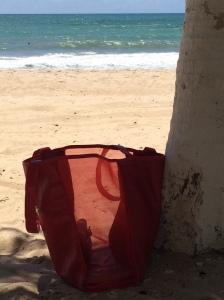 adorei esta foto! na praia de maracaipe