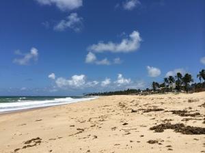 uau! praia linda e vazia.